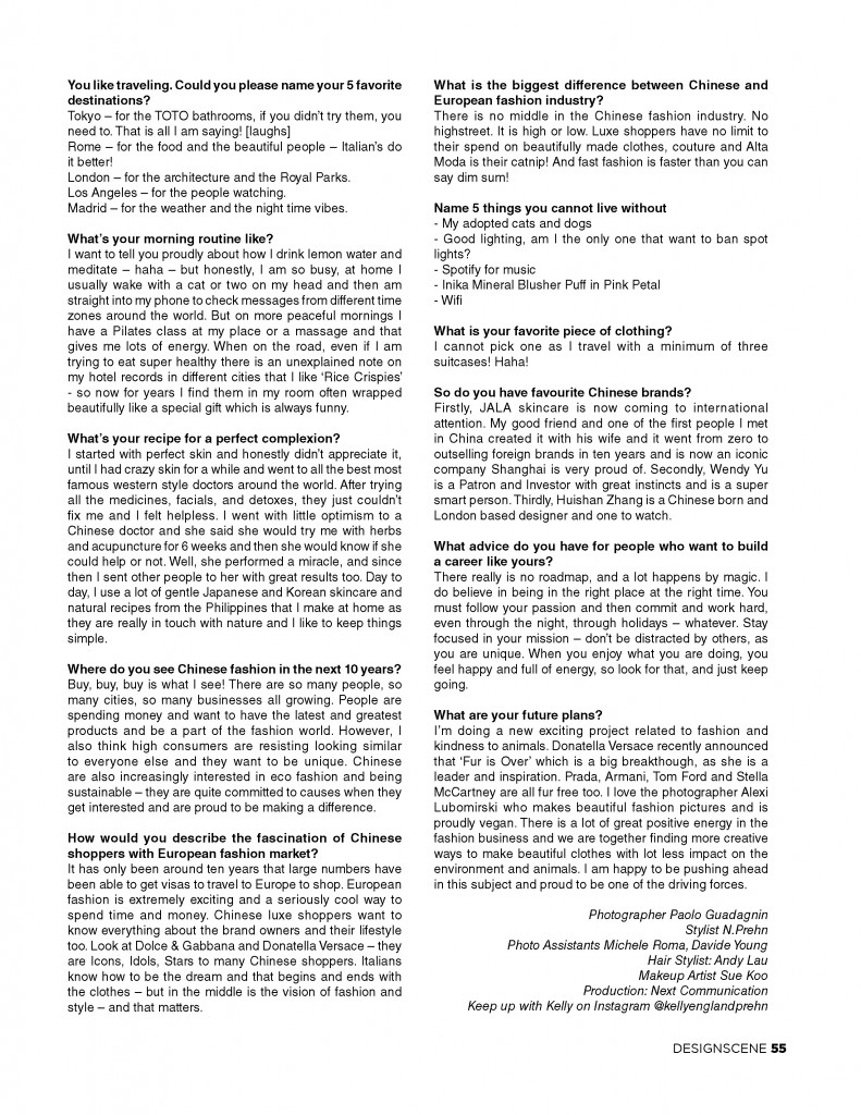 kelly-england-prehn-design-scene-paulo-guadagnin (4)